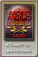 Moon Bronze Award